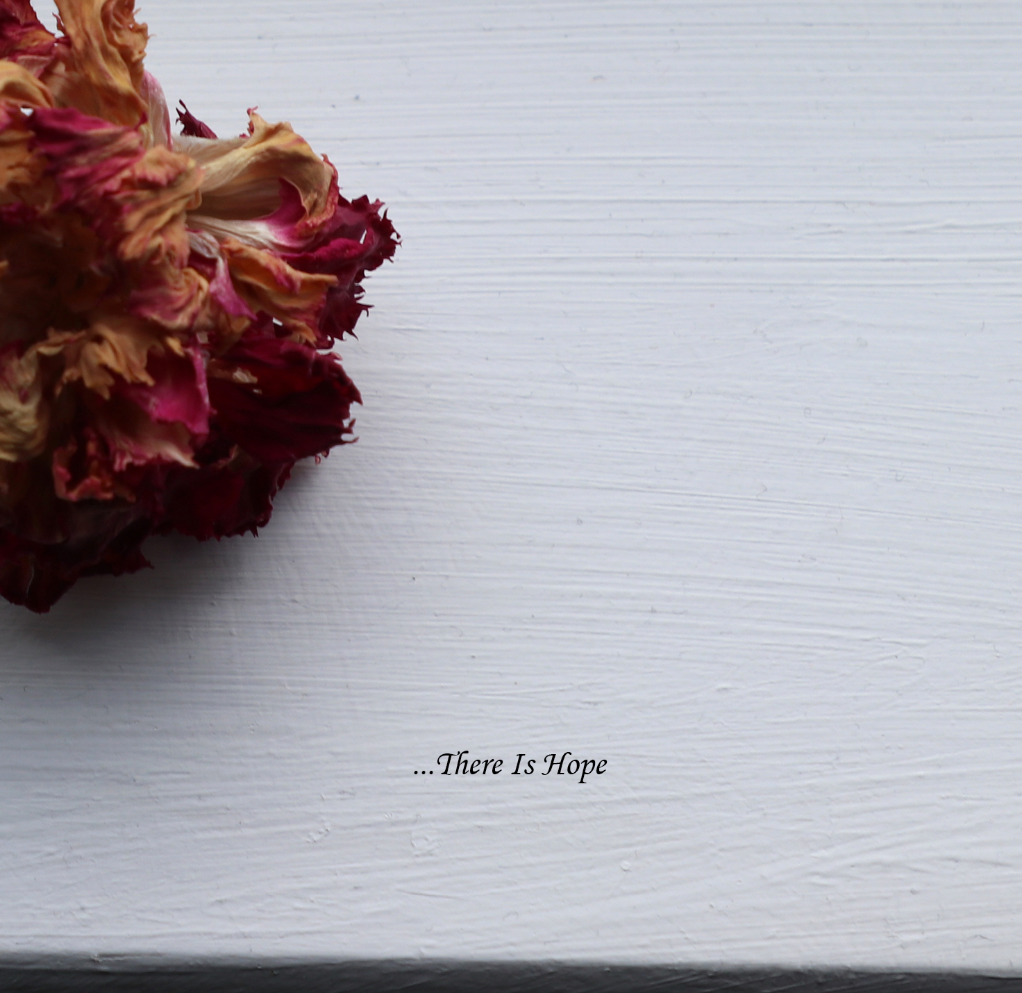 There Is Hope - For bandcamp